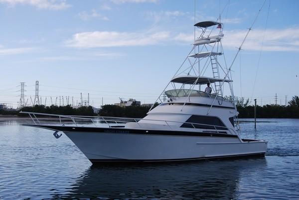 Key west deep sea fishing charters high stakes charters for Key west charter fishing